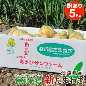 【訳あり】 5キロ 淡路島産 新たまねぎ|asahi-onion-awaji