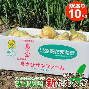 【訳あり】 10キロ 淡路島産 新たまねぎ|asahi-onion-awaji