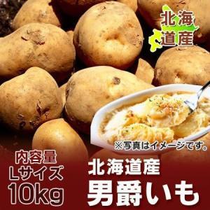 じゃがいも 送料無料 北海道 じゃがいも 男爵いも 10kg Lサイズ 価格 3240円 北海道産 男爵いも asahikawajyogai