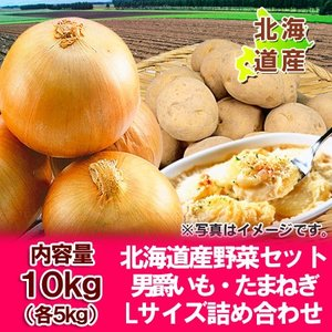 「北海道産 野菜セット 送料無料 ギフト」北海道の男爵いも・たまねぎをセット「北海道 野菜セット 送料無料」Lサイズ (各5kg) 合計10kg(10 キロ)価格 3240円|asahikawajyogai