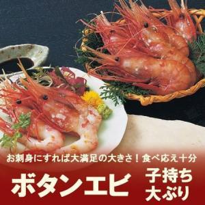 送料無料 ボタンエビを北海道から発送 刺身用ボタン海老 大ぶり 1kg(1キロ)(500g×2) 価格 8800 円|asahikawajyogai