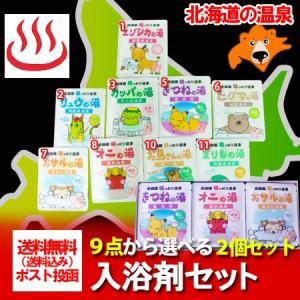 北海道 入浴剤 温泉 送料無料(9種類の入浴剤の中からお好きな2袋をお選び下さい) 40g×2個セッ...
