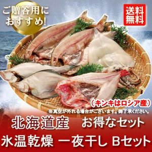 「北海道 干物セット 送料無料」 氷温乾燥 一夜干し きんき/ほっけ/真いか/宗八かれい セット 価格 8000 円|asahikawajyogai