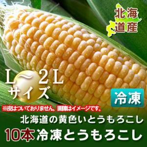 「北海道産 とうもろこし 冷凍」トウモロコシ 北海道の黄色いとうもろこし(冷凍)L〜2Lサイズを10本 価格 2280円 asahikawajyogai