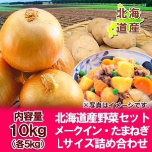 「北海道 野菜 送料無料 ギフト」北海道産 メークイン たまねぎ 「野菜セット」 詰合せ Lサイズ 10kg(各5kg)価格 3240円|asahikawajyogai