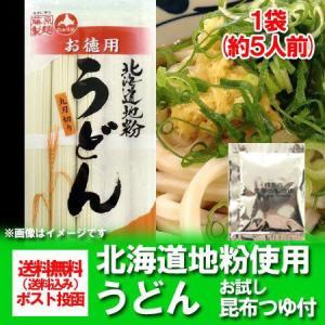 うどん 送料無料 乾麺 北海道産地粉を使用した乾麺 北海道(ほっかいどう)うどん 500 g(5束)×1袋 お試し 昆布つゆ 付 価格 500 円 お徳用 うどん/饂飩