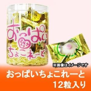 面白い お菓子 チョコレート おっぱいちょこれーと 24個入り1ケース(1箱) チョコレート 菓子 ...