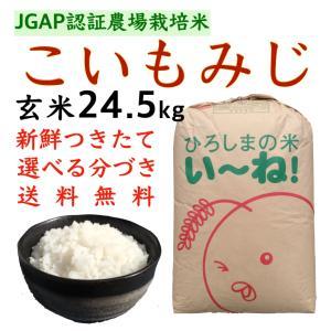 こいもみじ玄米24.5kg令和2年産 分づき 白米 送料無料 JGAPひろしまのお米|asahinaya-shop