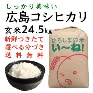コシヒカリ玄米24.5kg令和2年産 選べる分づき 白米・ 7・5・3・1分づき 送料無料 最安値 ひろしまのお米|asahinaya-shop