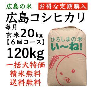 【定期購入】コシヒカリ玄米120kg(20kgx6回コース)令和2年産 選べる分づき 白米・ 7・5・3・1分づき 送料無料 ひろしまのお米 asahinaya-shop