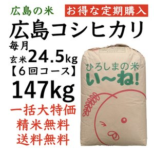 【定期購入】コシヒカリ玄米147kg(24.5kgx6回)令和2年産 選べる分づき 白米・ 7・5・3・1分づき 送料無料 ひろしまのお米 asahinaya-shop