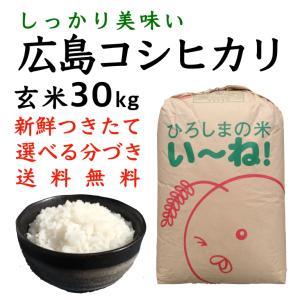 コシヒカリ玄米30kg令和2年産 選べる分づき 白米・ 7・5・3・1分づき 送料無料 ひろしまのお米|asahinaya-shop
