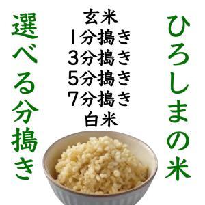 選べる分づき 令和2年産 お米セール 玄米24.5kg 送料無料 最安値 おいしい ひろしまのお米|asahinaya-shop