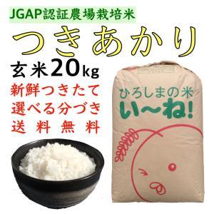 つきあかり玄米20kg令和2年産 選べる分づき 白米・ 7・5・3・1分づき 送料無料 ひろしまのお米 JGAP農場|asahinaya-shop