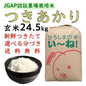 つきあかり玄米24.5kg令和2年産 選べる分づき 白米・ 7・5・3・1分づき 送料無料 ひろしまのお米 JGAP農場|asahinaya-shop