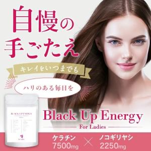 育毛 サプリ 産後 抜け毛 女性用  Black Up Energy For Ladies 抜け毛 ...