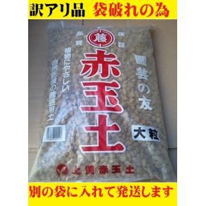 高級赤玉土 大粒 約9kg大袋 メダカ土 上質 鹿沼産 盆栽 保水 園芸 ポイント消化