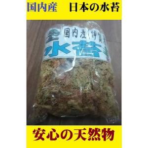 乾燥水苔40g 三重伊賀産  天然 洋ラン セッコク 蘭 洋蘭 水コケ みずこけ ポイント消化