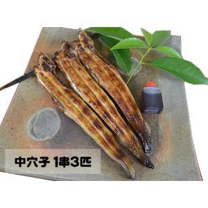 炭火焼き あなご 中穴子 1串3匹|asaji