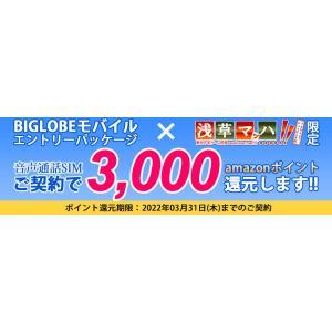 【メール便限定】BIGLOBE(ビッグローブ) モバイル エントリーパッケージ 格安SIM iPho...