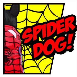 犬服 ドッグウェア スパイダーマン コスプレ|asalter