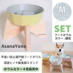 フードボウル 早食い防止 犬 Mサイズ 瀬戸焼 陶器 食器スタンド セット おしゃれ 日本製 Asa...