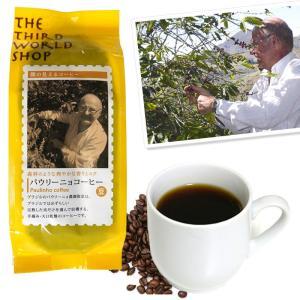 フェアトレードパウリーニョコーヒー(豆) 200g 中深煎 |asante