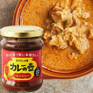 カレーの壺 スパイシー 220g 【動物性原料・化学調味料・保存料・小麦粉不使用】|asante