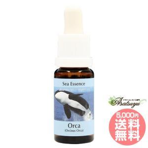 オルカ Orca コルテPHIエッセンス シーエッセンス