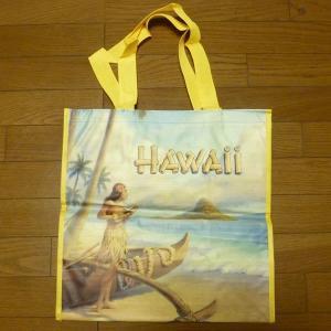 エコバッグ コストコ S ハワイ限定 ハワイ雑貨 アメリカ雑貨 costco usdm hdm トートバッグ ビニールバッグ|aseff