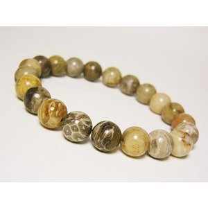 11/23日までセール!10mmフォッシルコーラル珊瑚の化石 天然石パワーストーンブレスレット 写真の商品をお届け1点もの|ashiya-rutile