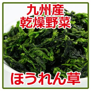 乾燥 ほうれん草 95g  国産 九州産乾燥野菜|asianlife