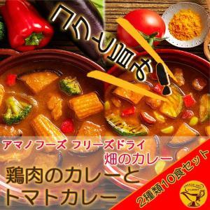 アマノフーズ フリーズドライ 畑のカレー 鶏肉のカレーとトマトカレー2種類10食セット 即席(容器付き)レトルトカレー|asianlife
