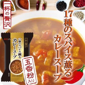 一杯の贅沢 17種のスパイス薫るカレースープ 厳選素材 フリーズドライ食品|asianlife