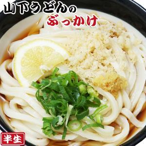 讃岐うどん 山下のぶっかけうどん 2食入(半生麺、箱)常温保存|asianlife