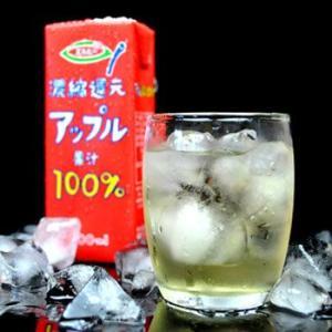 (紙パック ジュース) 濃縮還元アップル果汁100%りんごジュース 200mlX12本セット(ソフトドリンク・清涼飲料水)|asianlife