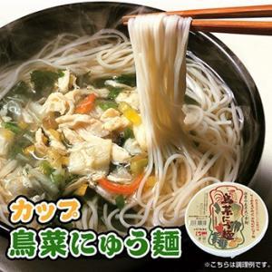 フリーズドライ 鳥菜にゅう麺 カップ 66g×2カップ(にゅうめん) 坂利製麺所|asianlife