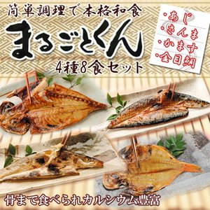 干物 魚 まるごとくん4種8食セット レトルト おかず 惣菜  国産 常温保存