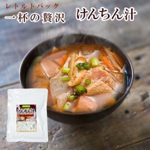 レトルト けんちん汁250g 醤油味 具だくさん 長期1年保存 レトルトみそ汁 非常食・保存食