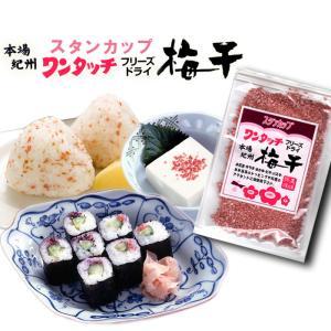 ワンタッチ梅干43g 和歌山紀州産の梅を使用 農家で漬けた梅干を種を抜き、フリーズドライ製法(凍結乾...