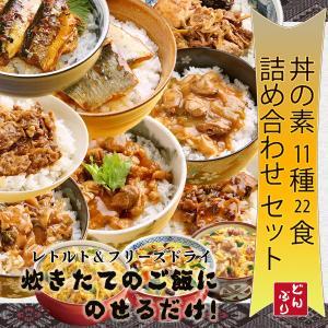 無添加 どんぶりの素 11種類22食 詰め合わせセット レトルト フリーズドライ 食べ比べ 和風 中華 簡単調理|asianlife