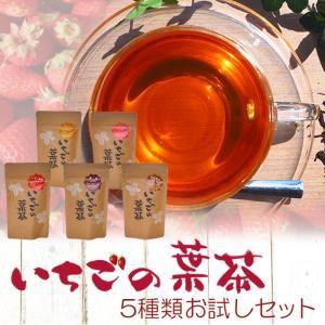 いちごの葉茶(2gX8P)X5種類ティーバッグお試しセット (ハイビスカス いちご果実 スパイス 焙煎加工 黒豆) 健康茶 ギフト 母の日|asianlife