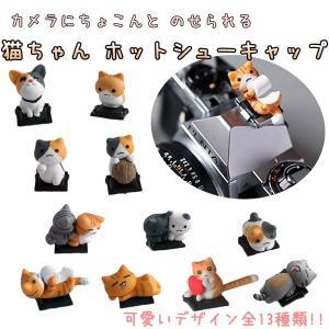 ホットシューキャップ 一眼レフ ミラーレス一眼レフ用 とっても可愛い子ネコホットシューカバー 全11種 各メーカー共通タイプ canon nikon 子猫|asianzakka
