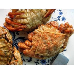北海道産 栗蟹5杯(1kg程度) かに カニ 蟹 クリカニ くり |ask-sanin