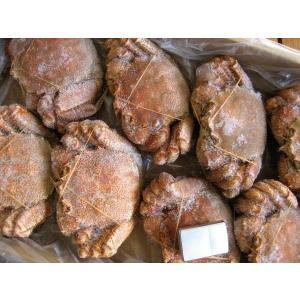 北海道産 栗蟹5杯(1kg程度) かに カニ 蟹 クリカニ くり |ask-sanin|04