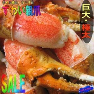 極太ずわい蟹親爪4Lサイズ 1kg入り かに カニ