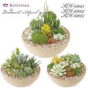 木やガラス、ロープなどそれぞれに質感のある鉢がインテリアにマッチする、空気をキレイにする消臭アーティ...
