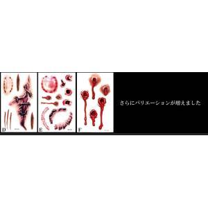 キズ タトゥーシール ハロウィーン コスプレ ゾンビ 3D リアル 仮装 ET-KZTTU|aspace|03