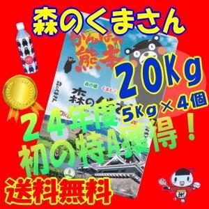 九州の米、28年産【29年新商品】森のくまさん、20Kg白米(熊本の米)5Kg×4個