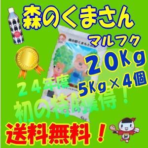 九州の米、28年産【】丸福、森のくまさん、20Kg 5Kg×4個、白米、(熊本の米)